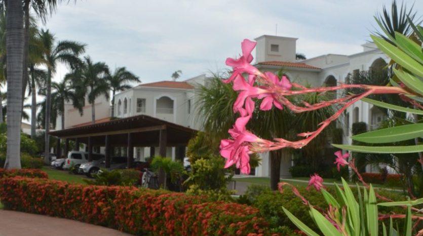 Nuevo Vallarta El Tigre Green Bay 59