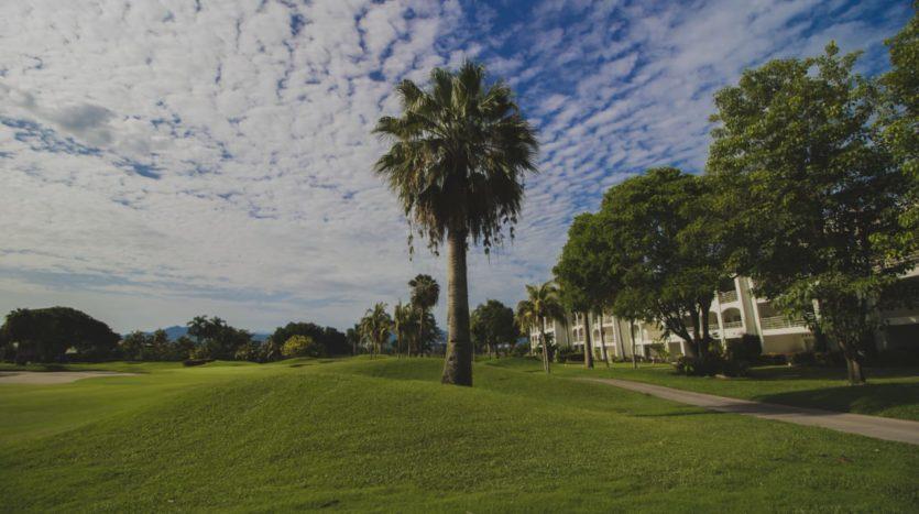 Nuevo Vallarta El Tigre Green Bay 61